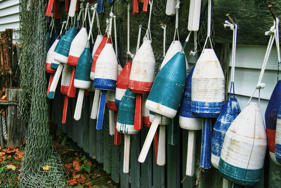 Maine - Collection of Buoys